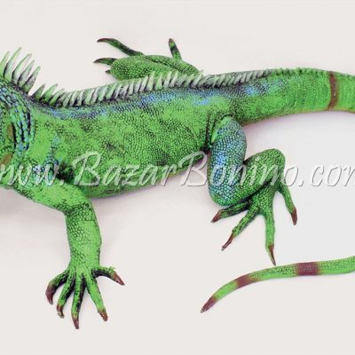 AK0050 - Iguana in Gomma - Lattice